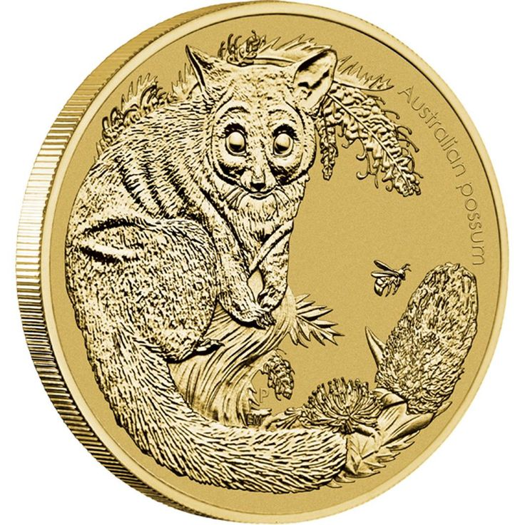 Australian Bush Babies II - Possum 2013 Stamp and Coin Cover | The coin and stamp both feature the brush-tailed possum.  One of Australia's most familiar marsupials, this lively animal is the size of a domestic cat with a pointed face, long oval ears, a pink nose and a bushy black tail.