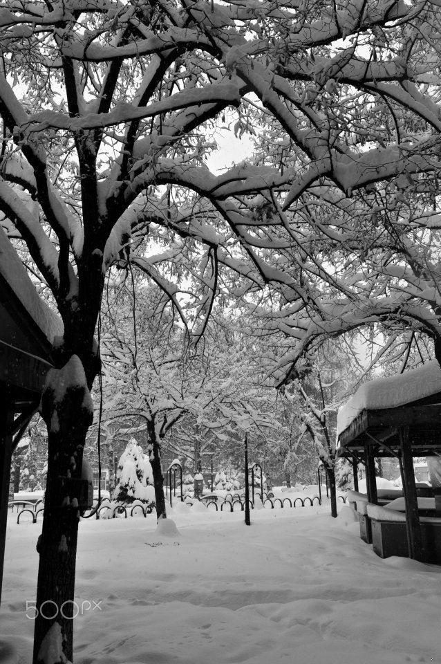 Ploiesti-_februarie_2012.jpg - Winter in Romania- Ploiesti, Prahova County