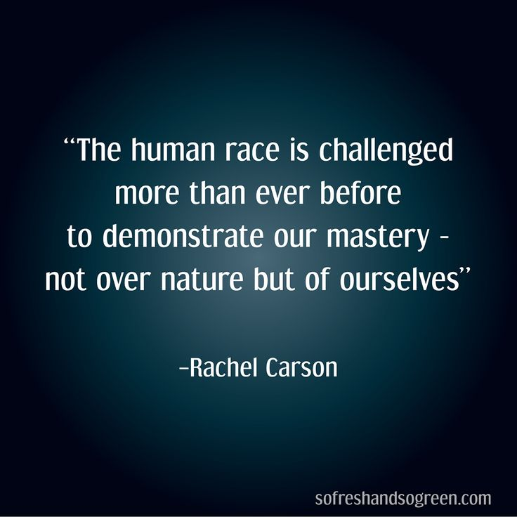Carson Quotes: 25+ Best Ideas About Rachel Carson On Pinterest