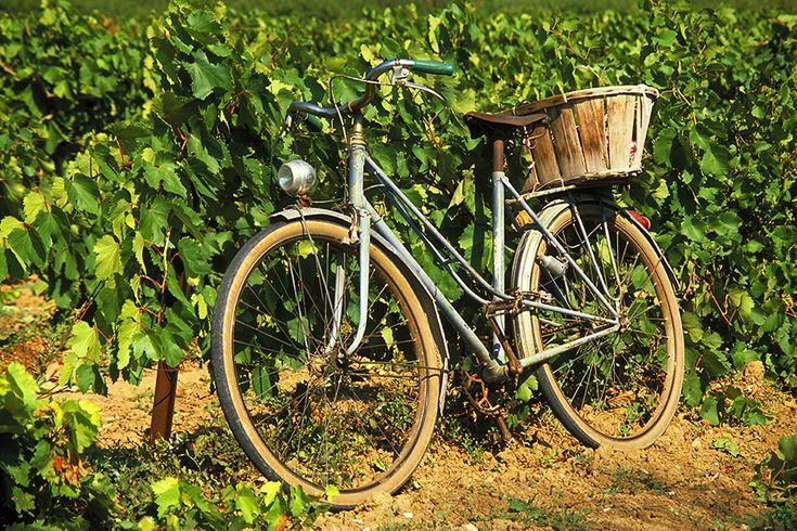 #niagara # winetour #bike