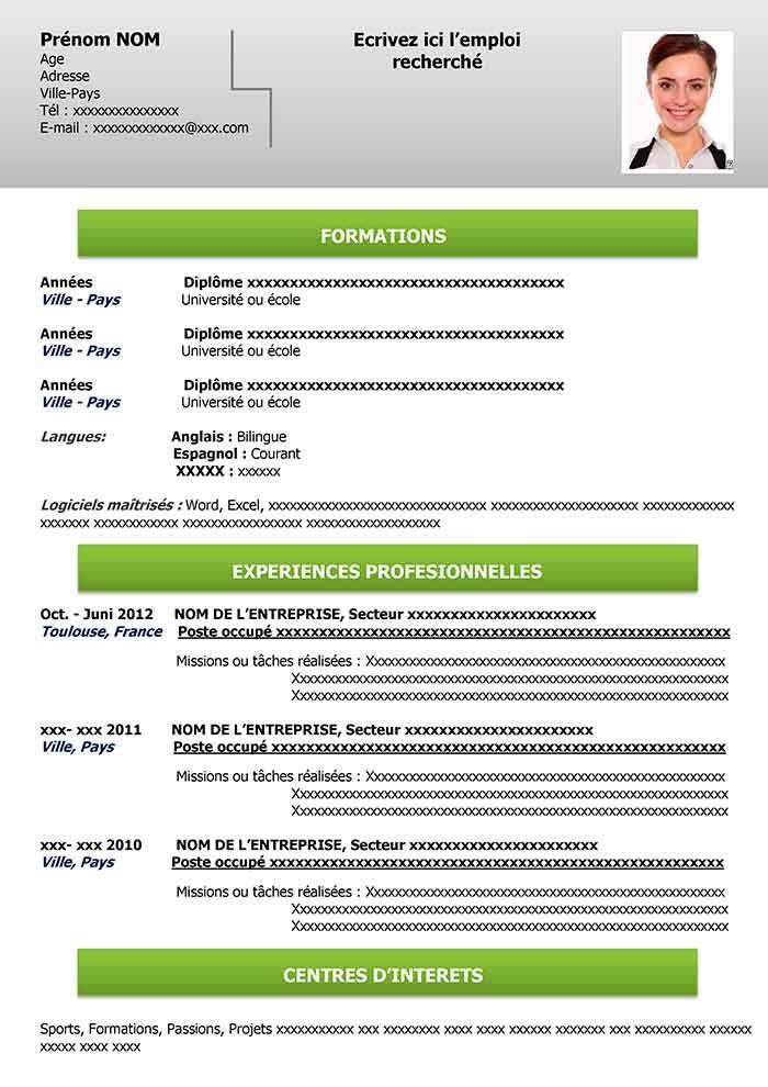 Modele Cv Vierge Gratuit Telecharger Cv A Remplir Modele Cv Modele De Cv Professionnel