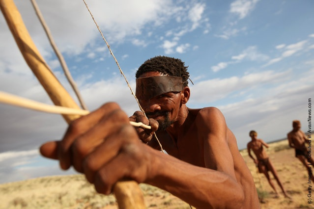 Study Suggests San Bushmen May Be Oldest Population On Earth