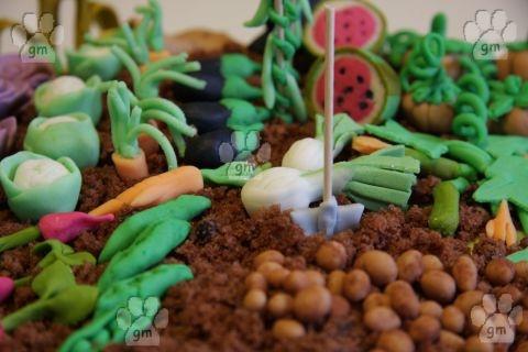 [pdz] Torta orto...pienissima!!!