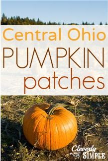 Complete list of Central Ohio Pumpkin Patches!!
