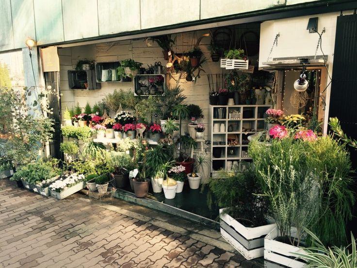 【ONE DAY in日本】BIOTOP/保有原本生態系空間。衍生為一間復合式選貨店的名字。 | haveAnice