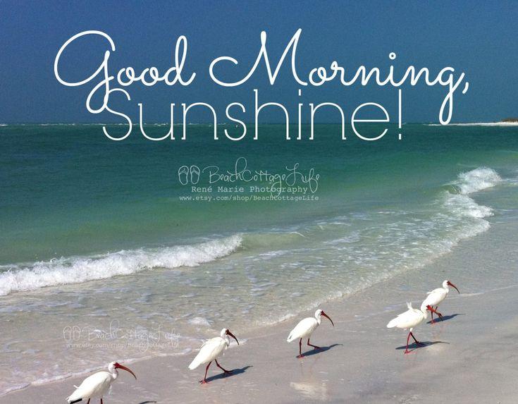 Good Morning Sunshine Quotes: Best 25+ Good Morning Sunshine Quotes Ideas On Pinterest