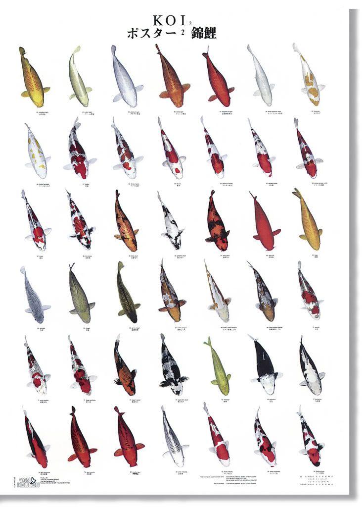 M s de 1000 ideas sobre accesorios de agua para el jard n - Accesorios de jardin ...