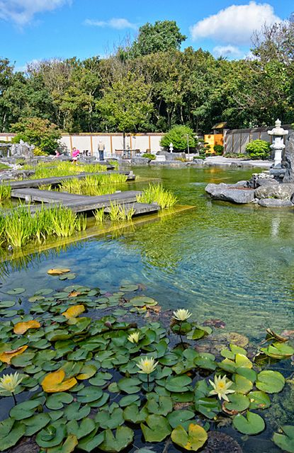 Japanese Garden In Oostende, Belgium