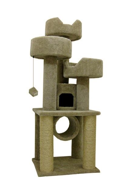 cat climber - Cat Climber