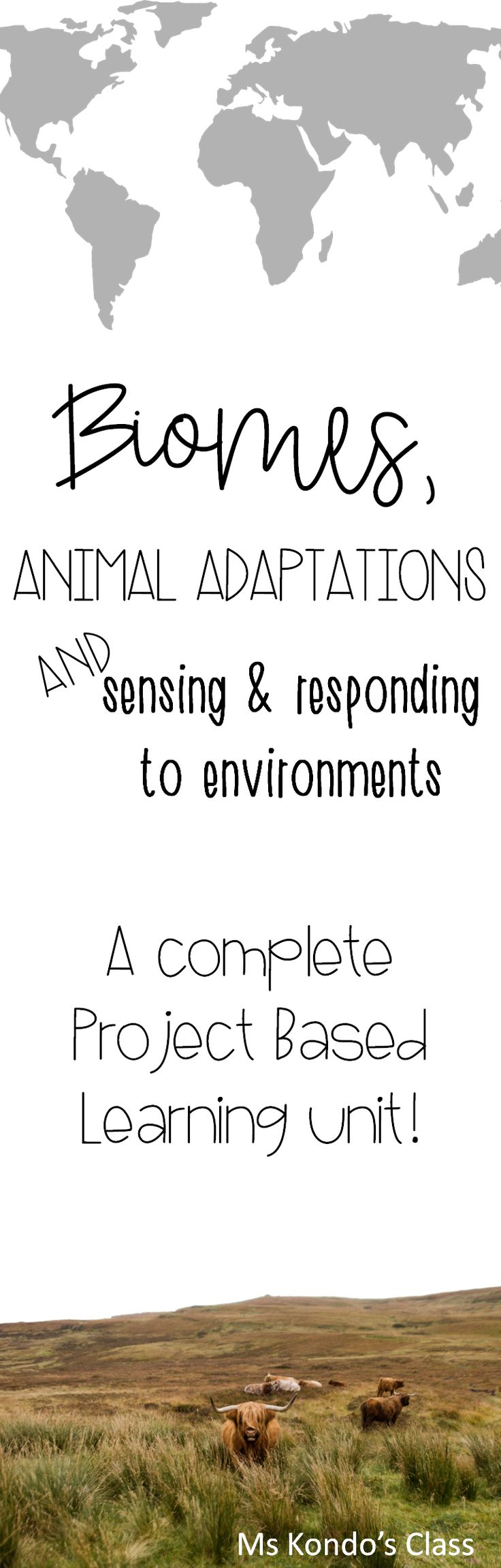 Biomes, animal adaptations, and how animals sense and respond to environments. All these topics are covered in this complete Project Based Learning unit! I have included   original texts, research prompts, comprehension questions, rubrics, assignments, projects, and more!