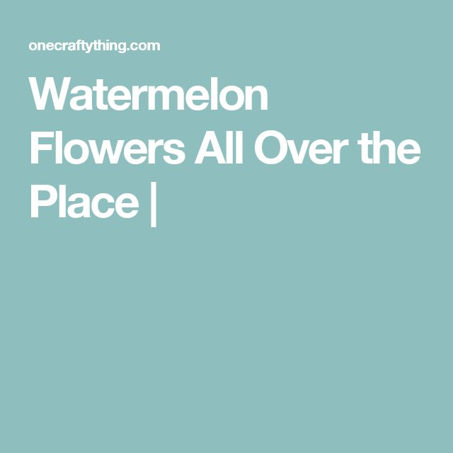 Watermelon Flowers All Over the Place |