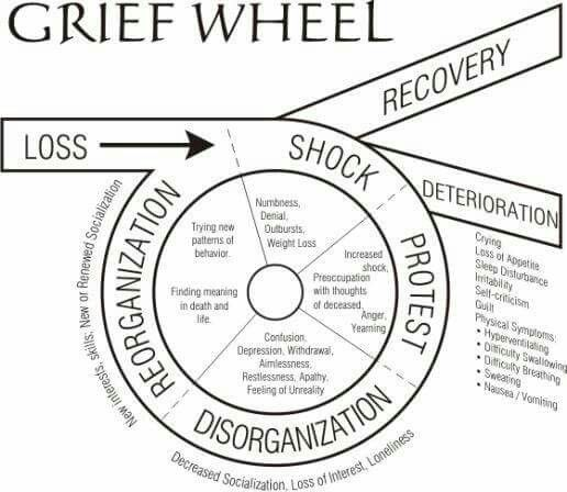 grief and grieving essay