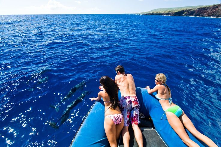 Contact Us For Cheap Hawaii Vacation Package Deals Httpwww - Hawaii vacation packages cheap