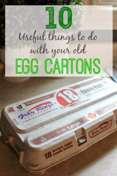10 Useful Things To Do With Old Egg Cartons | Health & Natural Living