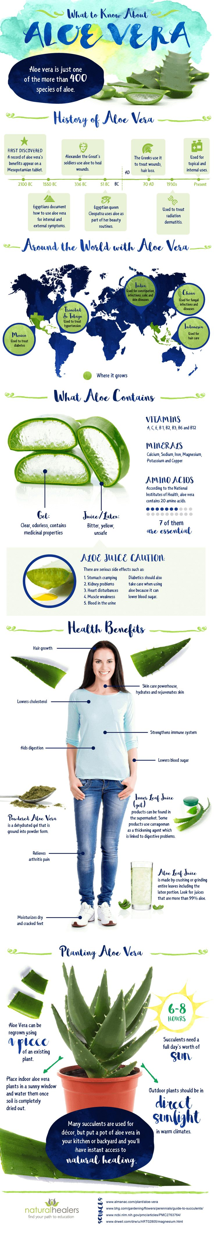 There are plenty of ways that you can use aloe vera; it all depends on what kind of problem you have. The best would be planting an aloe vera plant in your house and using the freshly extracted gel for your smoothie, skin rashes, or what so ever you may be suffering from.