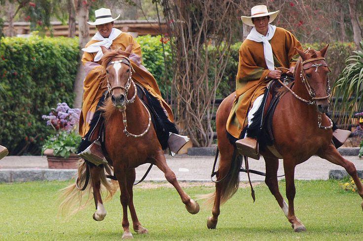 PERU HISTORY & CULTURAL AND GASTRONOMY IN PERU 9D/8N