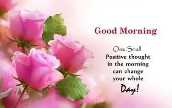 Good Morning With Rose Flowers Good Morning Quotes Good Morning Images Morning Quotes