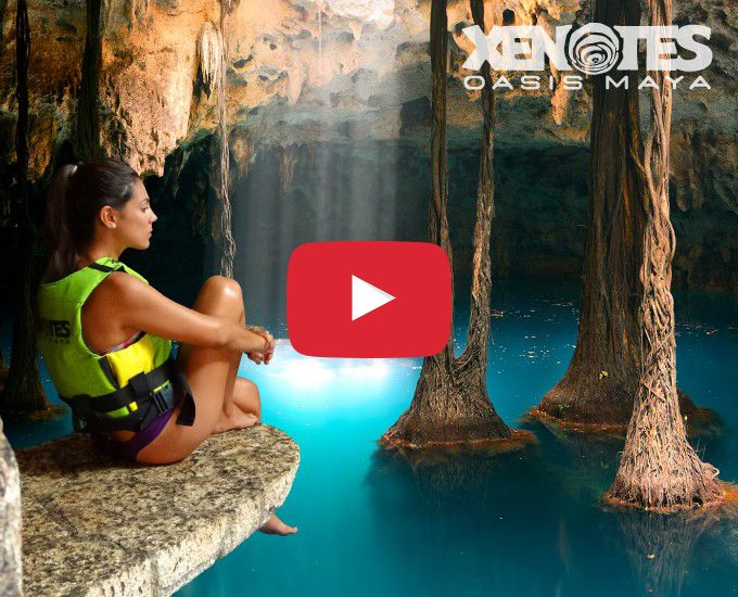 Xenotes Oasis Maya Tour will take you from your hotel to unveil four different types of cenotes near Cancun.