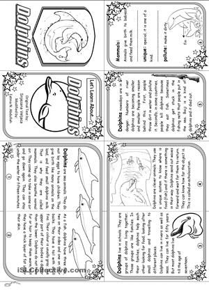 A non-fiction facts about dolphins - ESL worksheets