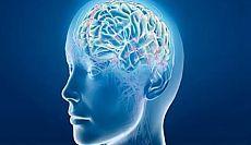 Венозный застой сосудов головного мозга.