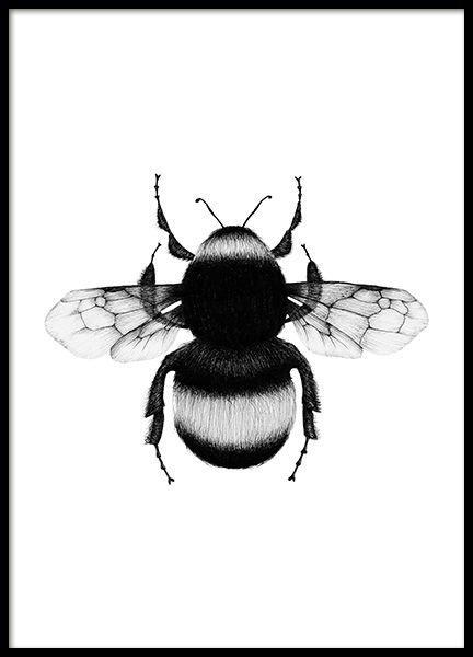 Poster Schwarz Weiß | Schwarz Weiß Bilder online bestellen | Desenio