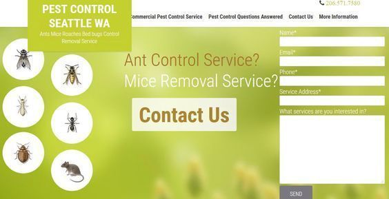 Commercial pest control company with exterminators for bed bugs, little black sugar ants, carpenter ants, rat control, house mice, rodent control,birds,beetles, moths, flies, termites, wasps,yellow jackets and hornets.Ampm Pest control service takes pride in family and pet friendly effective home pest control in king county areas of Seattle, Bellevue, Redmond, sammamish, kirkland, Renton, Everett, Bothell and Issaquah. #seattlecommercialexterminators http://ampmexterminators.com/