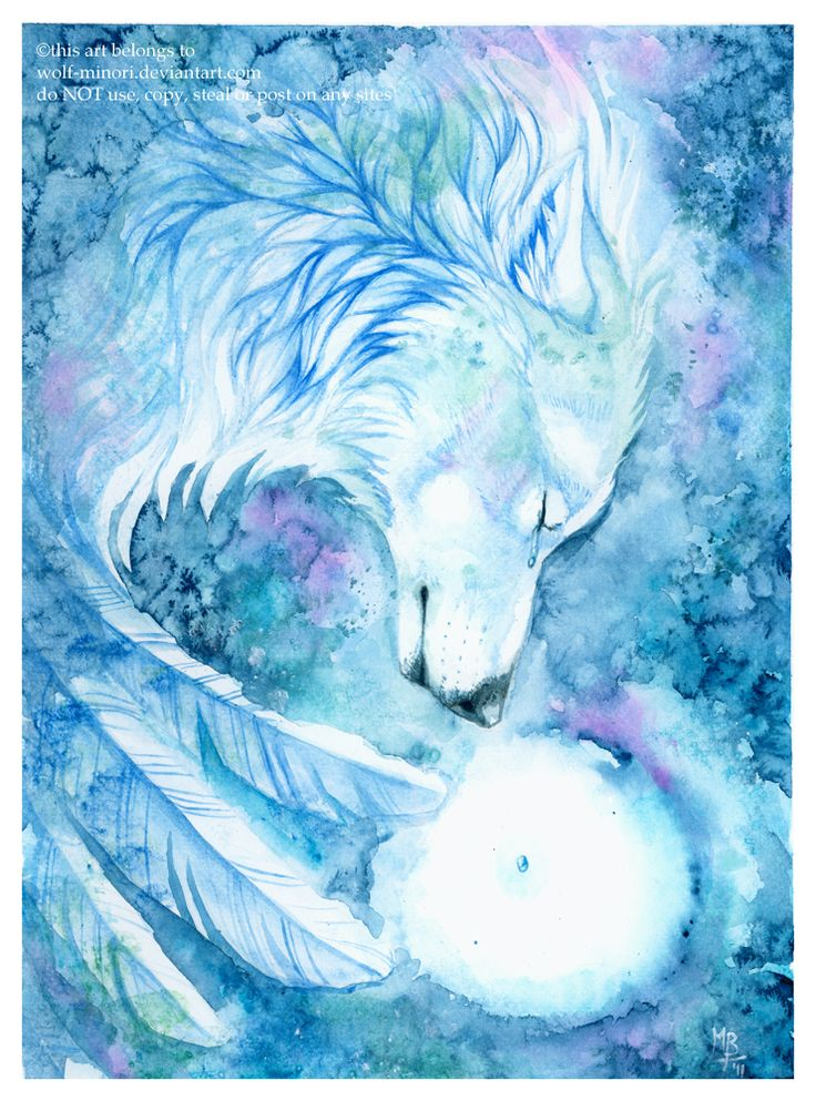 Tears of an Angel by wolf-minori.deviantart.com. If you love wolf art, this artist has a lot of pretty stuff.
