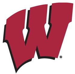 Wisconsin Badgers Wall Paint Motion W Logo Stencil