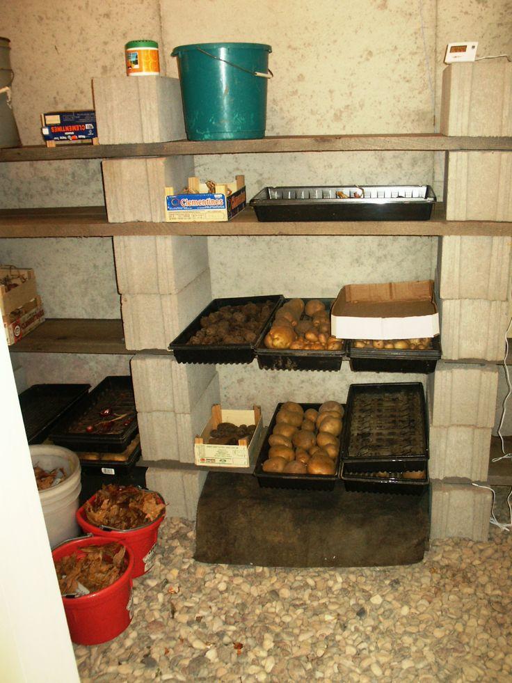 Raíz Bodegas 101: El Camino Bajo Costo para almacenar más de 30 frutas y verduras sin electricidad.  ¿Cómo diseñar un sótano?  ¿Qué puedo almacenar en un sótano?