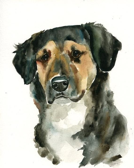 Custom Pet Portrait Watercolor Pet Portrait Dog Portrait Custom