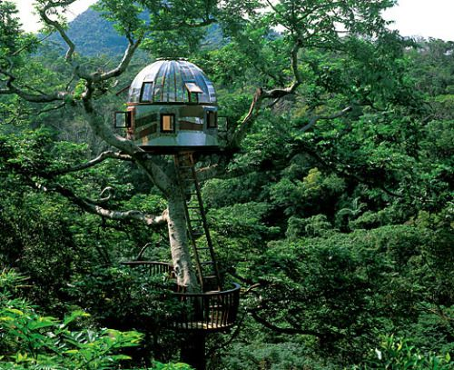 "Beach Rock Treehouse: Okinawa, Japan This treehouse by Japanese builder Kobayahsi Takashi was constructed with the express purpose of communicating with outer space. ""A sparkling beacon among treetops, it is easy to imagine the dome succeeding at its..."