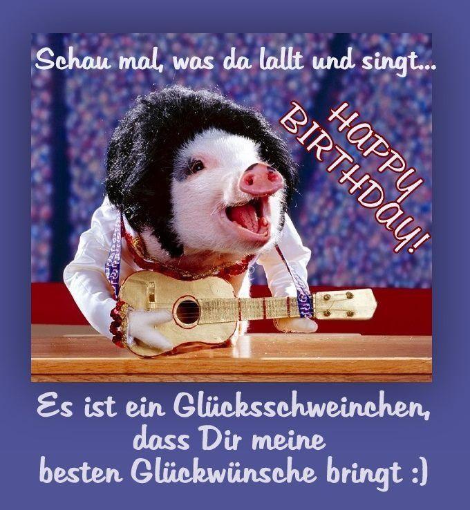 Happy Birthday Schwein Geburtstagsbilder Geburtstagswunsche