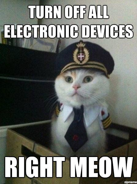 Turn Off All Electronic Devices Right Meow Funny Humor