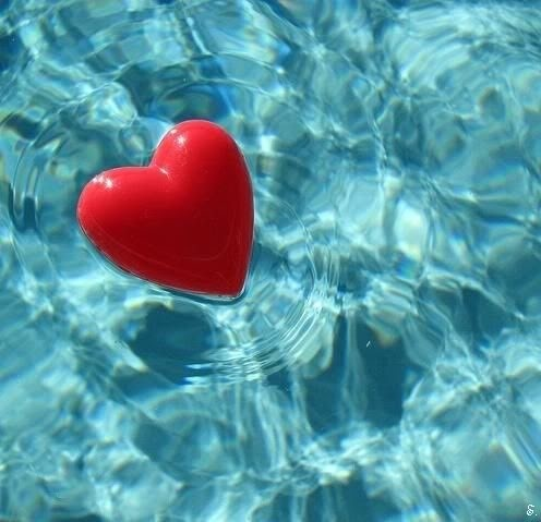 : Floating Heart, Colors Combos, Heart, Swim Pools, Weights Loss Tips, Heart Design, Red Heart, Water Balloon, Amor Meu