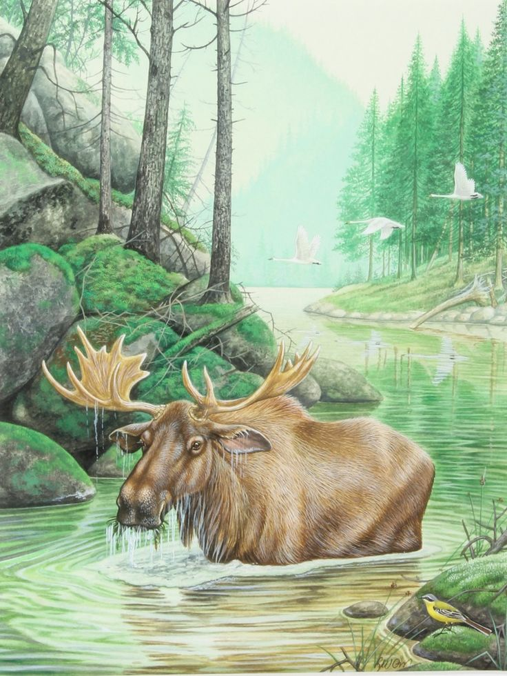 """Lot 419, Richard W Orr, watercolour, signed, study of a moose in a river landscape with geese in the background 10 1/4"""" x 8"""", est £300-400"""
