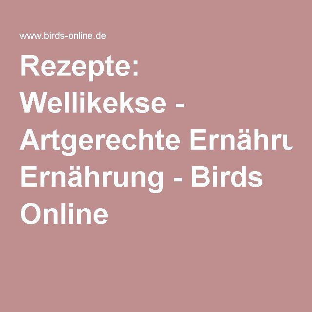 Rezepte: Wellikekse - Artgerechte Ernährung - Birds Online