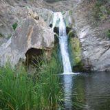 Eagle Point Loop - Wildwood Park - California   AllTrails.com