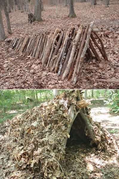 Survival Shelter - Leaf Hut - Probably the most effective.