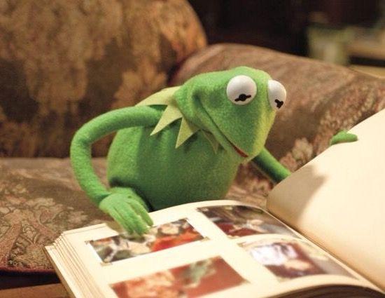 90 best SaD KErMiT images on Pinterest | Frogs, Dankest ...