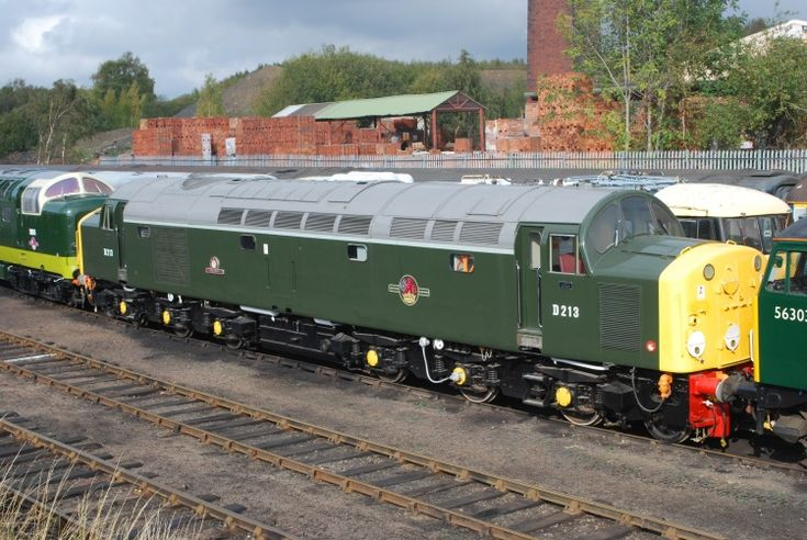 Railway Herald :: Imaging Centre :: D213 at Barrow Hill shed