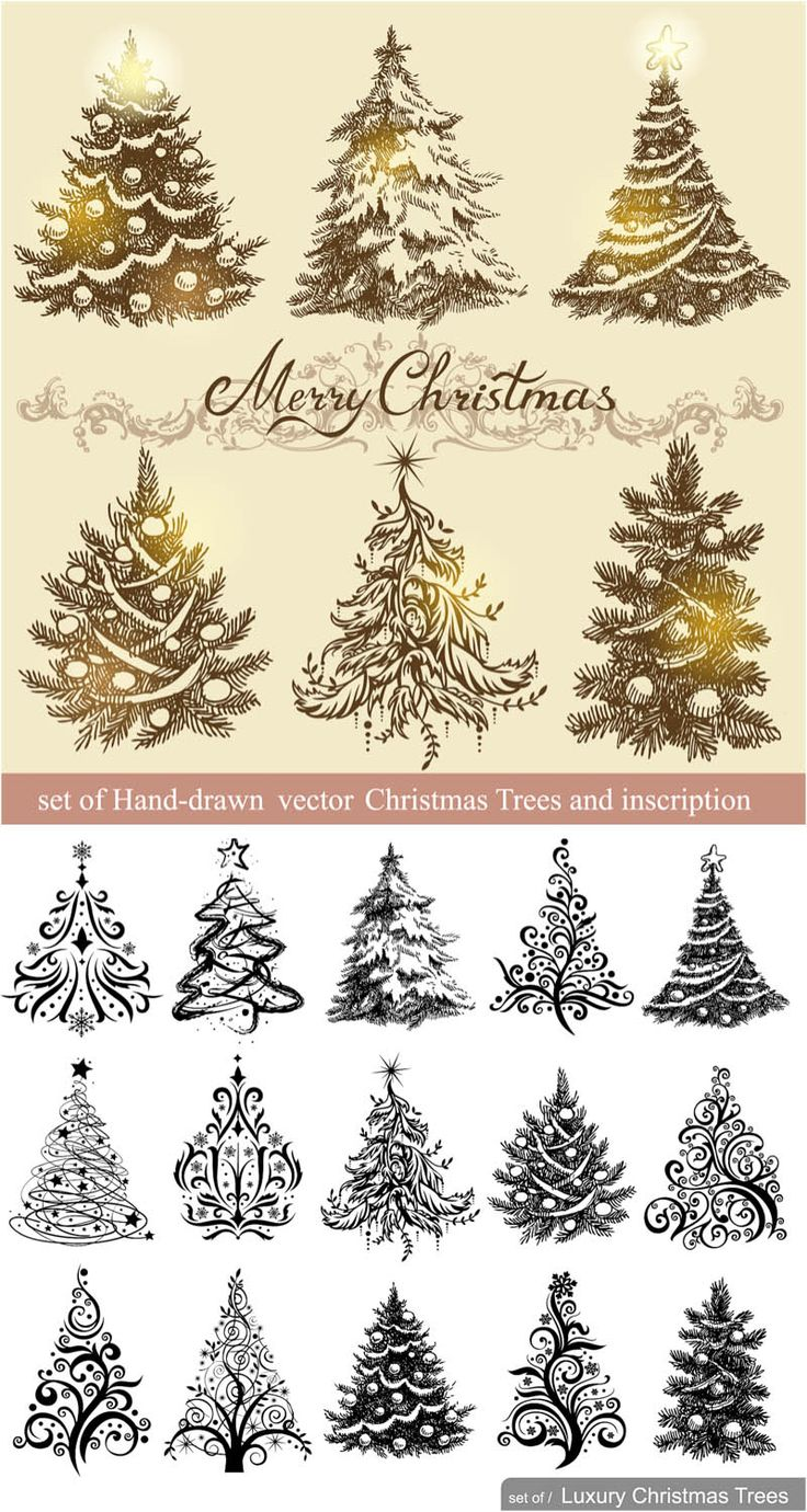 Christmas tree drawing - Vintage Christmas Trees Designs Vector Free Stock Vector Art Illustrations Eps Ai