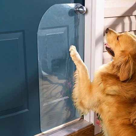 Si su perro rasca la puerta para salir, usar un protector de puerta para minimizar daños.