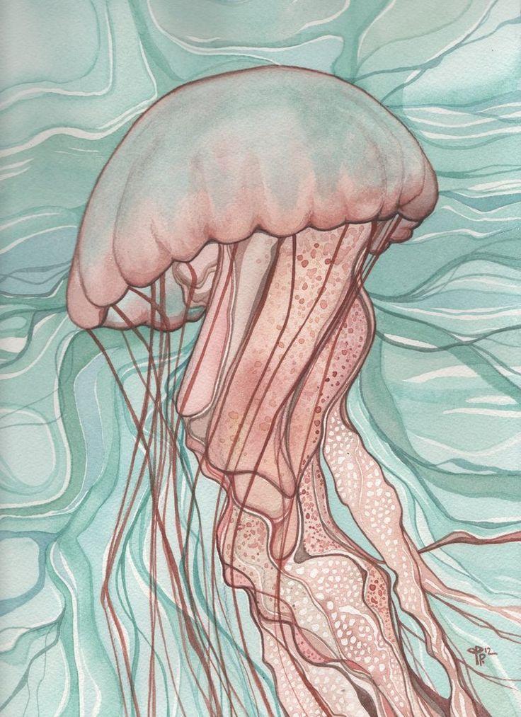jellyfish 4 by tamaraphillips on DeviantArt