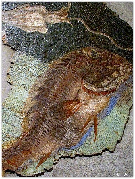 Acquario musivo: un mosaico dove con grande naturalismo sono ritratti pesci, molluschi e ... http://zibalbar-foto.overblog.com/2013/10/mosaico-marino.html