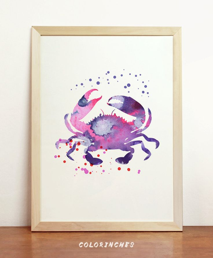 Crab Watercolor Purple Pink Marine Sea Beach Ocean Fauna Natural Mollusk Nautical Palm Chic Bathroom Sealife Art 8x10 A4 8.3 x 11.7 in - N54 by Colorinches on Etsy https://www.etsy.com/listing/216616800/crab-watercolor-purple-pink-marine-sea