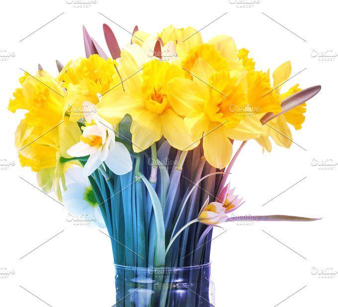 narcissus flower bouquet by Liliia Rudchenko on @creativemarket
