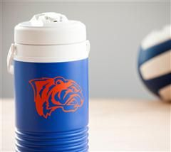 Team spirit water bottles