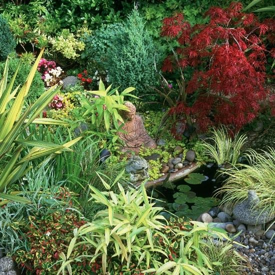 Wildlife Pond Surrounded By Pebbles: Acer Palmatum, Gardens And Garden Ideas