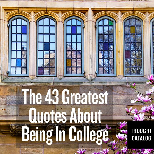 43 Awesome quotes about college