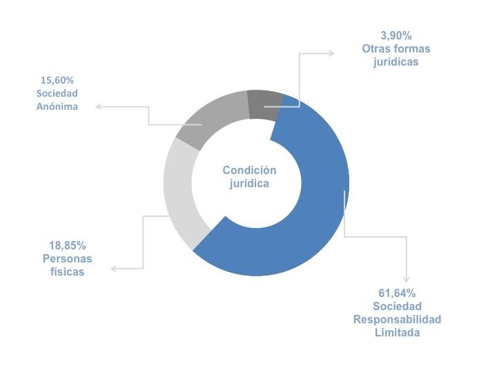 Porcentaje de agencias de viajes y operadores turísticos en España en función de su condición jurídica durante el año 2011 (Fuente: INE, 2011).